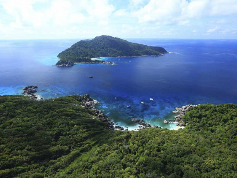 similan islands snorkeling day trip