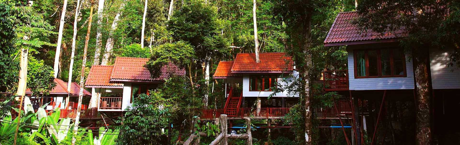 Khao Sok tree houses