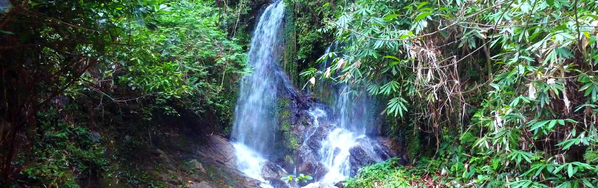 Waterfall in the Khao Lak jungle