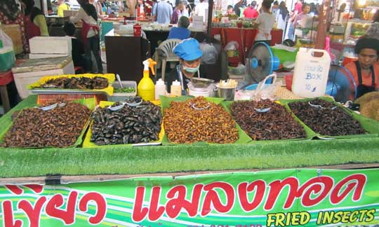 Fried insects are a delicacy at Naka Market Phuket