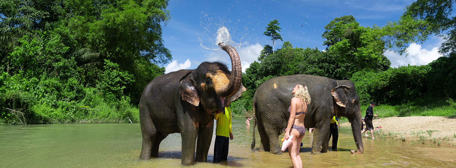 elephant-sanctuary-thailand
