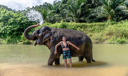 khao-sok-elephant-sanctuary