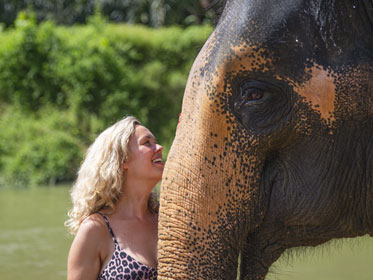 KHAO LAK ELEPHANT WELFARE CENTER