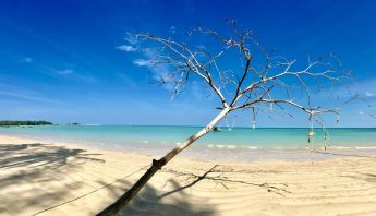 Coconut Beach khao lak